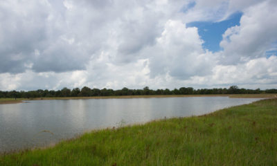 Oak Creek Ranch Forrest Lake Glry