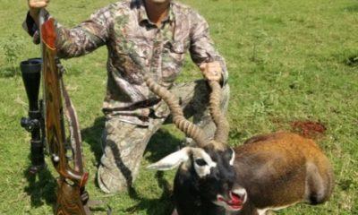 Oak Creek Ranch Hunt Oryx