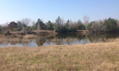 Oak Creek Ranch Pond 2 Glry